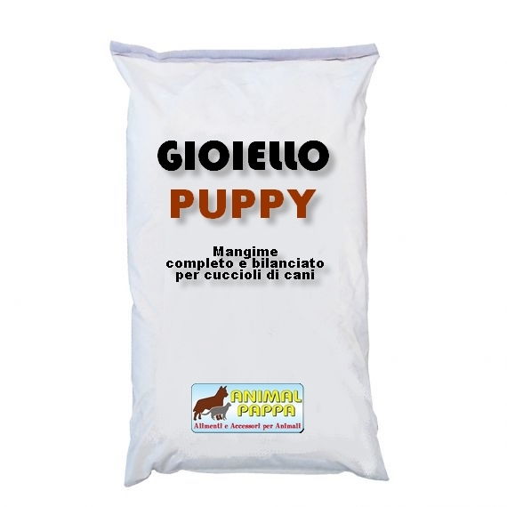 gioiello_puppy