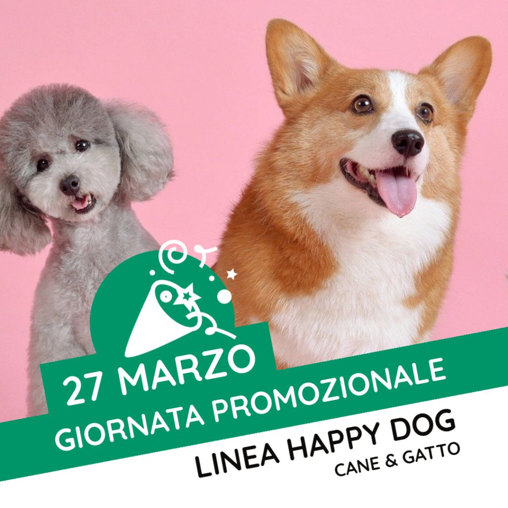 Promo Happy dog